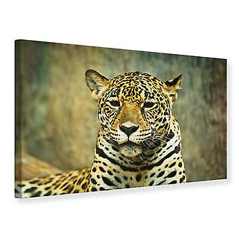 Leinwand drucken Panther Portrait