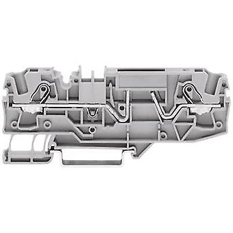 Fuse terminal 5.20 mm Pull spring Configuration: L Grey
