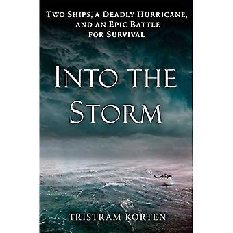 In i stormen