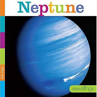 Neptune (semis)