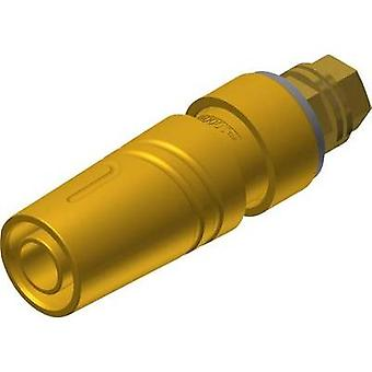 Safety jack socket Socket, vertical vertical Pin diameter: 4 mm Yellow SKS Hirschmann SAB 2600 G M4 Au 1 pc(s)
