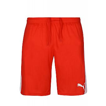 PUMA of soccer shorts with inner slip men's sports shorts Red