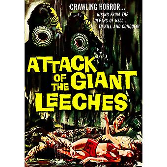 Attack of the Giant Lee ('59) [DVD] USA import