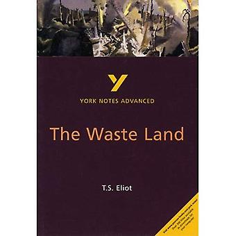 The  Waste Land  (York Notes Advanced)