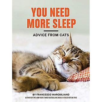 Tarvitset enemmän unta: Neuvoja kissoista