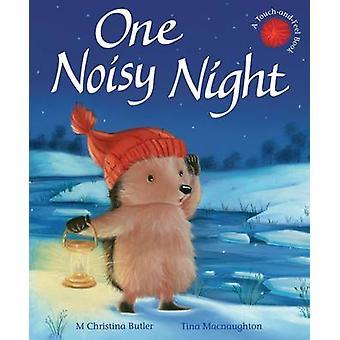 One Noisy Night by M. Christina Butler & Tina MacNaughton