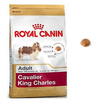 Royal Canin Cavalier King Charles Adult (Chiens , Nourriture , Croquettes)