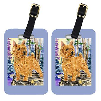 Carolines Treasures  SS8011BT Pair of 2 Norwich Terrier Luggage Tags