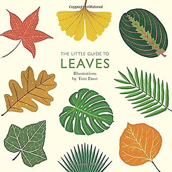The Little Guide to Leaves by Tom Frost - 9781787130333 Book