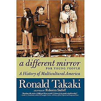 Different Mirror for Young People, A