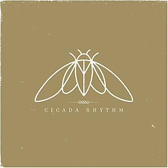 Cicada rytme - cikade rytme [Vinyl] USA importerer