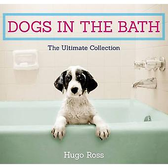 Dogs in the Bath - The Ultimate Collection by Hugo Ross - 978178530061
