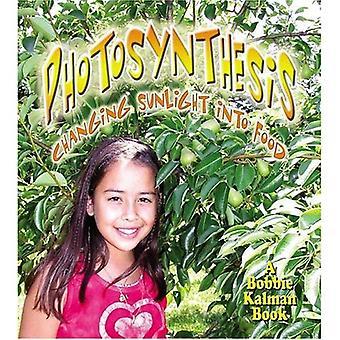 Fotosynthese: Veranderende zonlicht in voedsel (Nature's wijzigingen)