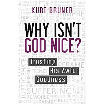 Why Isn't God Nice?: Trusting His Awful Goodness