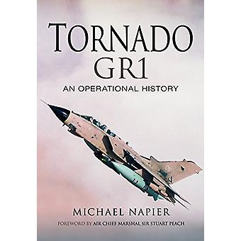 Tornado Gr1 - historia operacyjną przez Michael John W. Napier - 97814