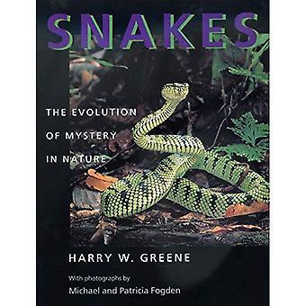 Slanger: Evolution of Mystery i naturen