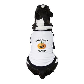 Pumpkin Current Mood Cute Dog Raglan Shirt Halloween Pet T-Shirts