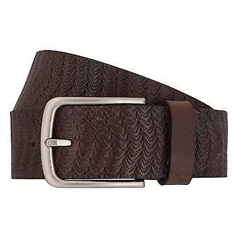 Camel active belts men's belts leather jeans belt Brown 6999
