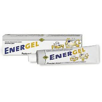 Fatro Pasta Oral Energel 80 Gr (Dogs , Supplements)
