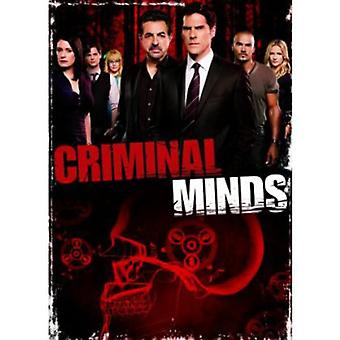 Criminal Minds - Criminal Minds: Season 8 [DVD] USA import
