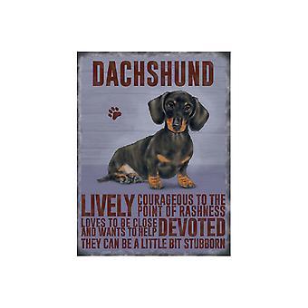 Original Metal Sign Co Large Dachshund 30 x 40cm
