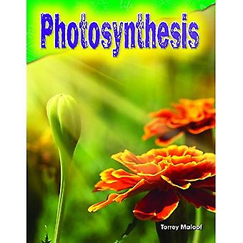 Photosynthesis (Grade 3) (Science Readers)