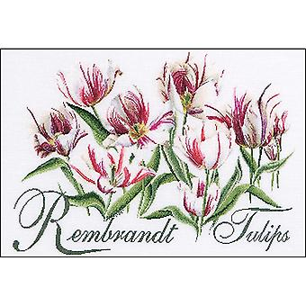 Rembrandt Tulips On Aida Counted Cross Stitch Kit-23.25