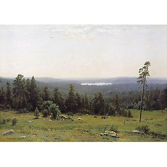 Landscape of the Forest,Ivan Shishkin,60x40cm