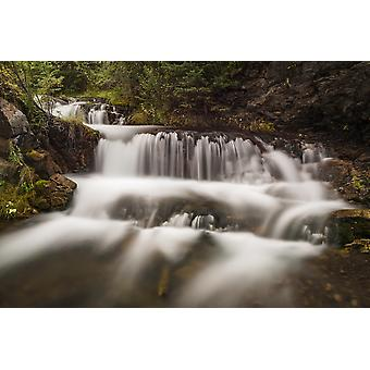 Cascading waterfall Hidden Falls Canmore Creek Canmore Alberta Canada Poster Print