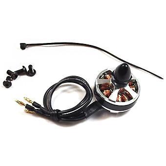 Hornisse Mini ECO2204X Motor CW