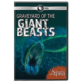 Secrets of the Dead: Graveyard of Giant Beasts [DVD] USA import