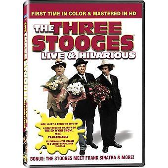 Three Stooges - Live & Hilarious [DVD] USA importerer