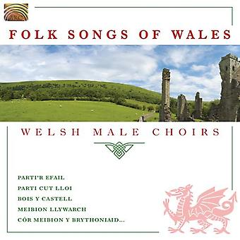 Folk Song di cori maschili di Galles-Welsh - Folk Songs of Wales [CD] USA importare