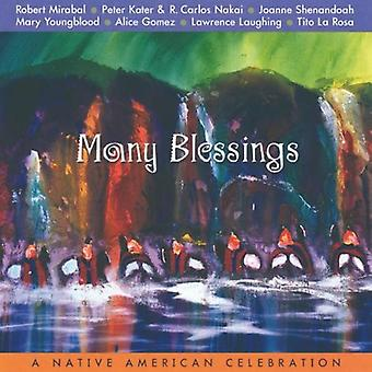 Silver Wave Artists - Many Blessings [CD] USA import