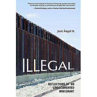Ungültig: Reflexionen eines undokumentierte Immigranten (Latinos in Chicago und dem mittleren Westen) (Latinos in Chicago und...