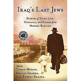De laatste Joden Iraks: verhalen van het dagelijkse leven, onrust en ontsnappen moderne Babylon (Palgrave...