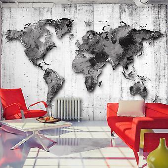 Behang-wereld in grijstinten
