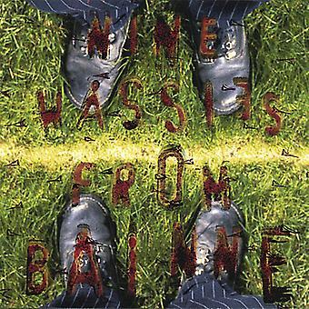 Nine Wassies From Bainne - Ciddy Hall [CD] USA import