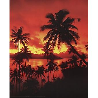 Beach Sunset In Fiji Poster Poster Print