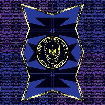 Virginia - blå pyramide [Vinyl] USA importerer