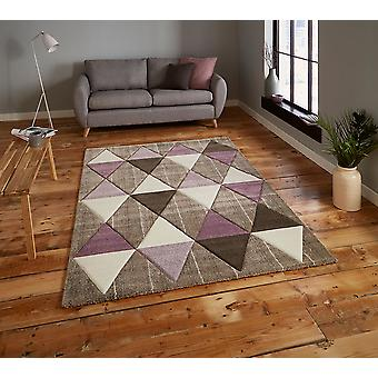 Brooklyn 21896 Beige Purple  Rectangle Rugs Modern Rugs