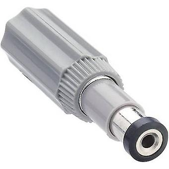 Lumberg NES 1 Low power connector Plug, straight 6 mm 1.98 mm 1 pc(s)