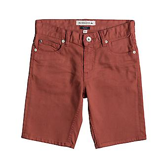 Quiksilver Mineral Red Distorsion Colors Kids Shorts