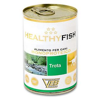 Kippy Healthy Trout (Dogs , Dog Food , Wet Food)