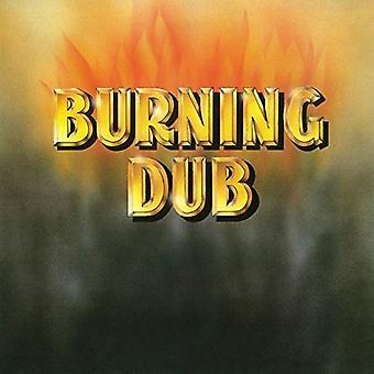 Revolutionaires - brændende Dub [Vinyl] USA importerer
