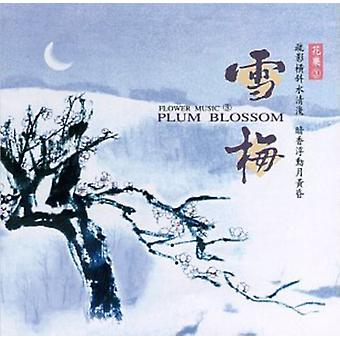 Blomme blomstre - Plum Blossom [CD] USA import