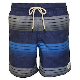 O ' Neill Santa Cruz banda rayas Shorts de baño, azul/gris