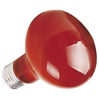 Ica Infrared bulb 100W (Reptiles , Lighting , Light Bulbs)