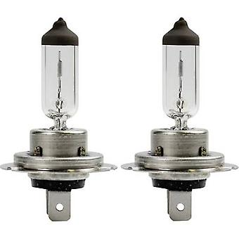 AEG halogeen lamp wit Xenon H7 55 W