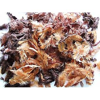 10g Mixed Brown Craft Feathers | Scrapbooking Card Making Embellishments